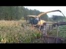 Уборка кукурузы.Комбаин Нью Холланд трактора К 744р3 и К 701