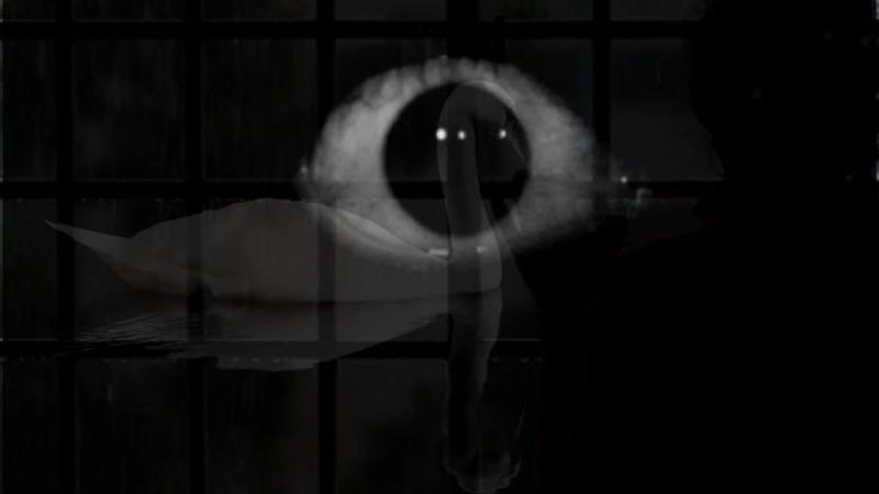 Seelennacht - Schwarz Bewegt HD