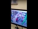 Двое наркоманов с пистолетом решили ограбить магазин на Московском шоссе