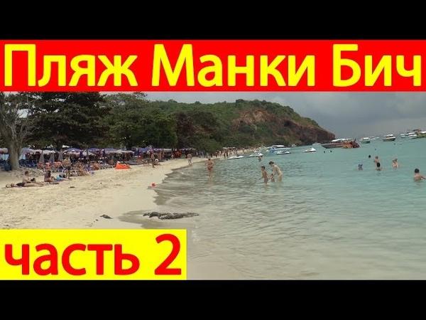 Как туристы развлекаются на острове Ко Лан - пляж Манки Бич цены - Таиланд