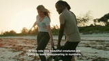 World Sea Turtle Day with Ellie Goulding