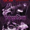 BringerStorm   Deep Purple Cover Band