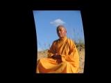 Это интересно_ 10 советов о том, как оставаться молодым от шаолиньского монаха