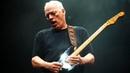 David Gilmour Sound Part 2/4: OD, COMPRESSORS AMPS | MusicOff