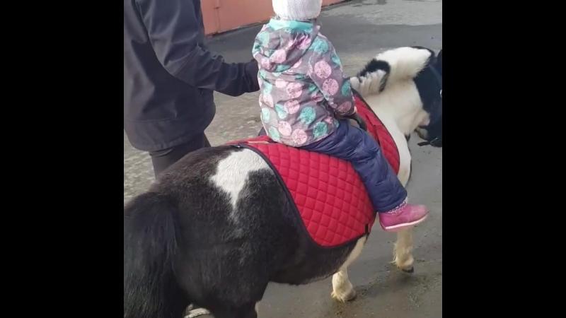 Первая поездка на пони 🐴