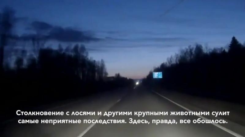 Видео о счастливчиках, которые в последний момент избежали катастрофы
