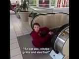 Eat ass, smoke grass, sled fast