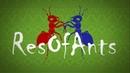 VIDEO x16 Ant wars Муравьиная ферма ResOfAnts Муравьи Messor Camponotus Diacamma Ants Day 10