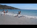 30 Dolphins stranding and incredibly saved! Extremely rare e