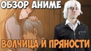 ОБЗОР АНИМЕ ВОЛЧИЦА И ПРЯНОСТИ!