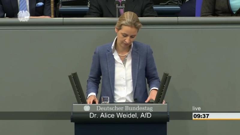 Wieder eine brillante Rede von Alice Weidel im Bundestag