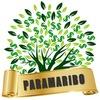 PARAMARIBO - 5% В СУТКИ БЕССРОЧНО