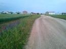 Прогулка на Лукулл 4