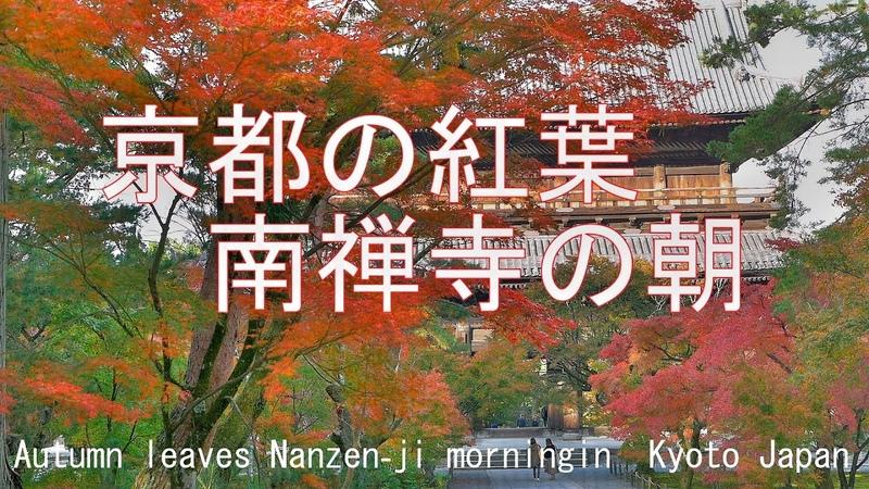 京都の紅葉 南禅寺の朝 京都市 2018 Autumn leaves Nanzen-ji morningin Kyoto Japan