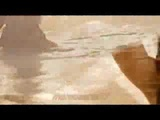 Арабская песня..скрипка