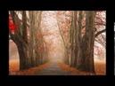 Alexandre Tharaud - (Bach) Concerto en ut mineur BWV 981