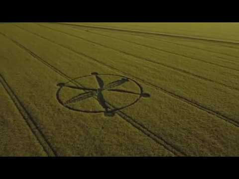 CROP CIRCLE 2018 Willoughby Hedge Mere Wiltshire 2018