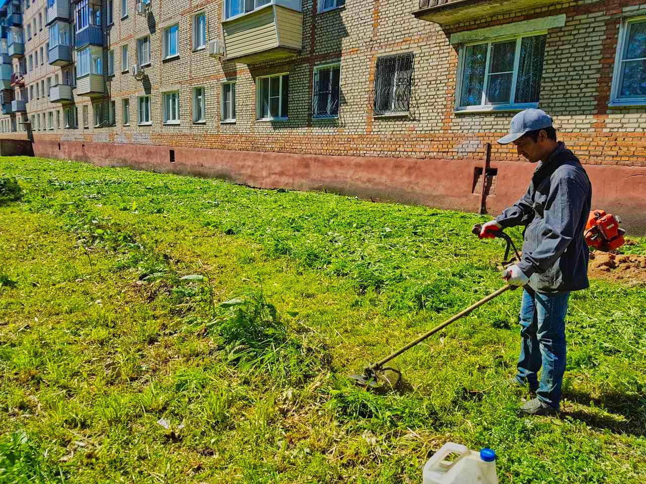 Скосили траву на проспекте Испытателей