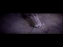 Олег Винник - Нино 1080p