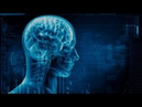 Проблема мозга и сознания (рассказывает нейрофизиолог Константин Анохин) ghj,ktvf vjpuf b cjpyfybz (hfccrfpsdftn ytqhjabpbjkju r