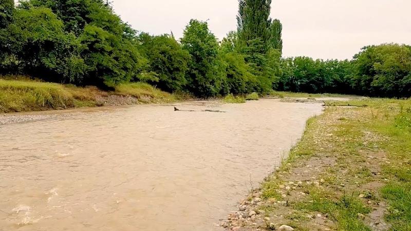 Река Гехи. Чечня