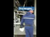 VID_883731006_050257_176.mp4