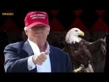Trumps Bizarre Adventure_ Wall Is Unbreakable Opening Anime