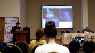 Дерматофитозы собак и кошек. Распространенность и диагностика. (В.А. Савинов, ВИЭВ, Москва 2018).