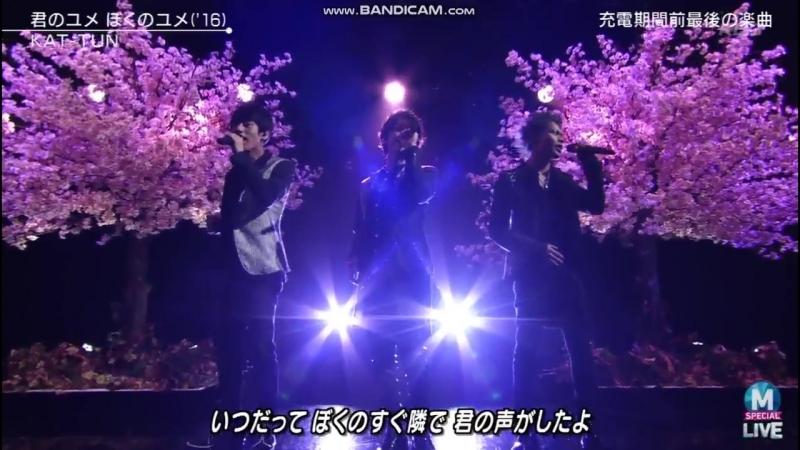 23/3 MuSta Kimi no