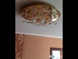 Обзор двухкомнатной квартиры ул.Дзержинского 9