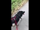 Клара с родителями на прогулке