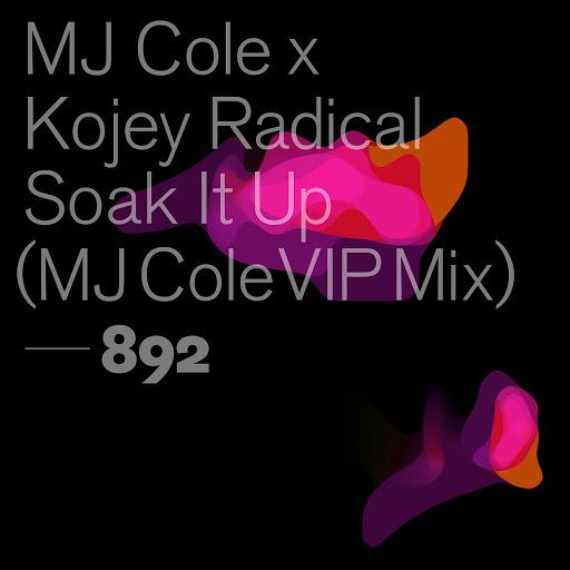 Mj Cole альбом Soak It Up (MJ Cole VIP Mix)