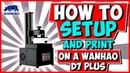 Wanhao Duplicator 7 Plus Setup and Print (D7 Plus)