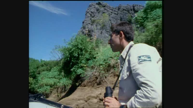 16-1 Душа острова Мадагаскар ч.1 (Одиссея Жака Кусто HD 1995г)