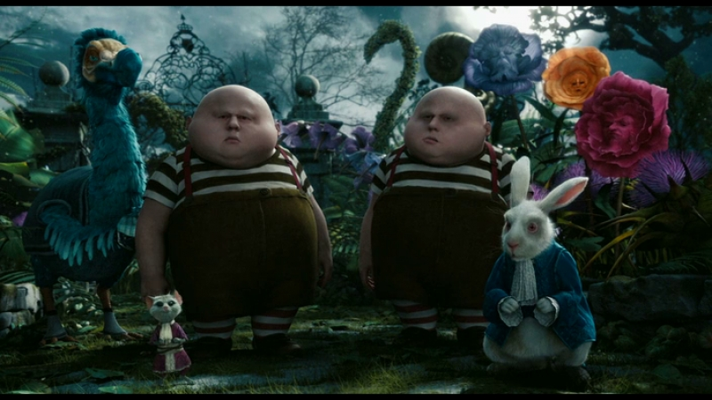Alice in wonderland | белый кролик возмущен