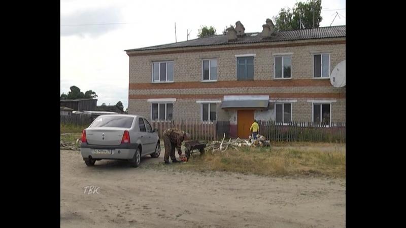Берёзы раздора: жители улицы Мичурина не сошлись во мнении по поводу срубленных деревьев на придворовой территории