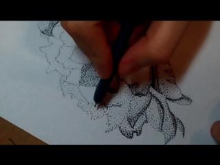 Цветок Пуантель