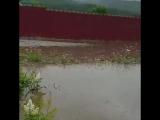 Река Витим вышла из берегов и затопила населенные пункты