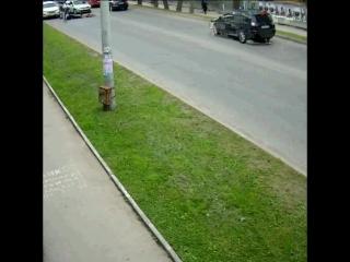 В Перми водитель автобуса сбил велосипедиста и скрылся