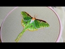 Hand embroidery design Butterfly    Вышивка: Бабочка 🧚