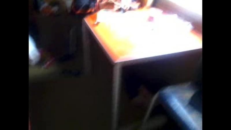 Video-2011-01-19-13-50-08