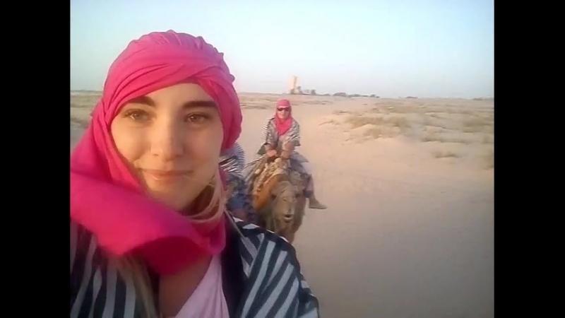 На верблюде по Сахаре. Тунис.
