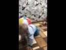 У бабушки с дедушкой в гостях