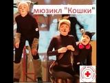 5.01.18 мюзикл Кошки