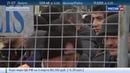 Новости на Россия 24 Журналистов Zaman выводили из здания в наручниках