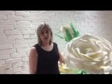 Елена Кузьмина , участница проекта fitness леди 3сезон
