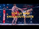 TOP 10 Best MMA Knockouts of 2018