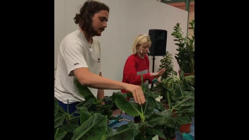 Touch Me at Plants pour Tous
