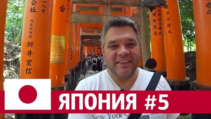 Киото, Япония. Гуляем по храмовым комплексам. Дорога 1000 алых ворот. Что привезти из Киото.