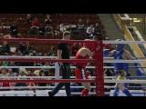 Кубок Москвы по тайскому боксу-2017 (15-17 декабря)